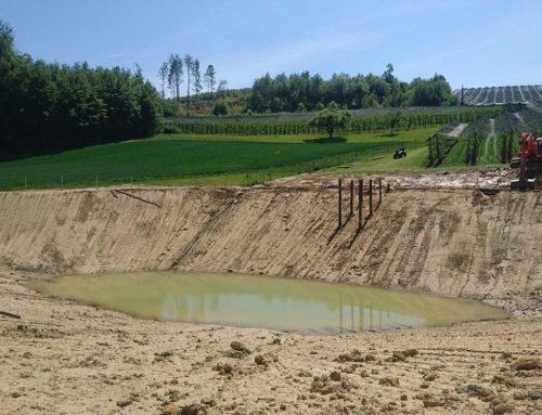 Bewässerungsteich Pfingstl in Riegersburg