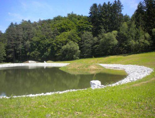 Bewässerungsteich Scheibelhofer in Pischelsdorf