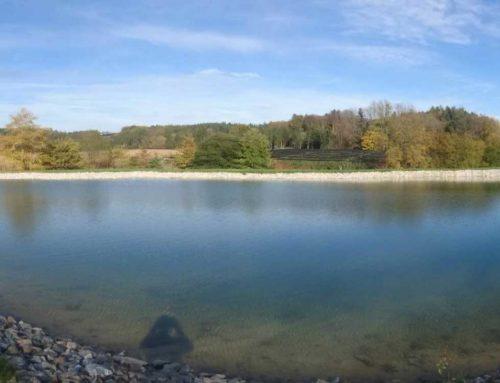Teich Schreiner